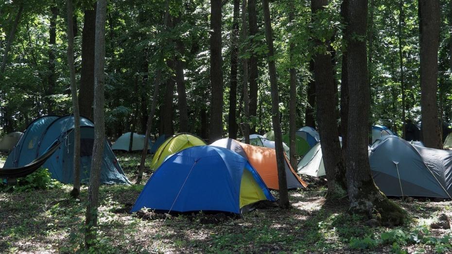 Сбежавшие из воронежского интерната подростки жили в палатке