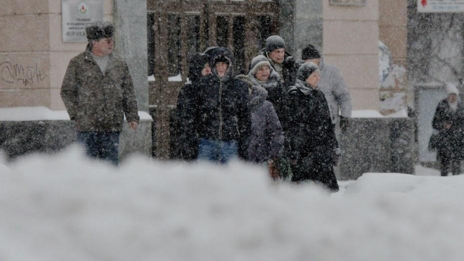Воронежские синоптики спрогнозировали морозную рабочую неделю со снегом