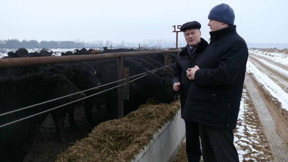 Замминистра сельского хозяйства России посетил крупное животноводческое предприятие  в Рамонском районе
