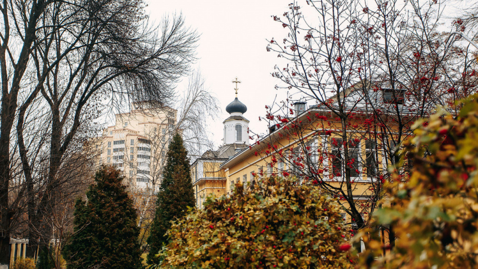 Последние выходные октября в Воронеже будут прохладными и дождливыми