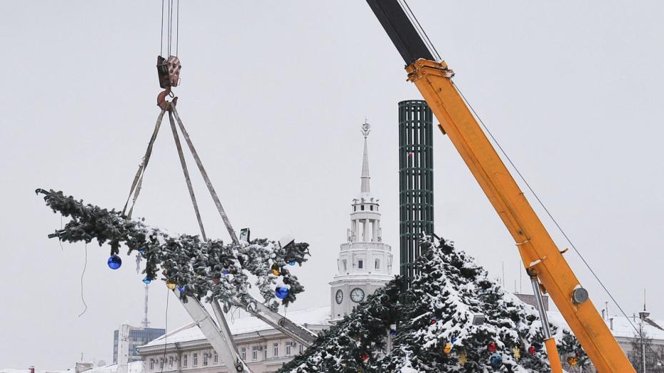 Антимонопольщики разморозили торги на установку главной елки Воронежа