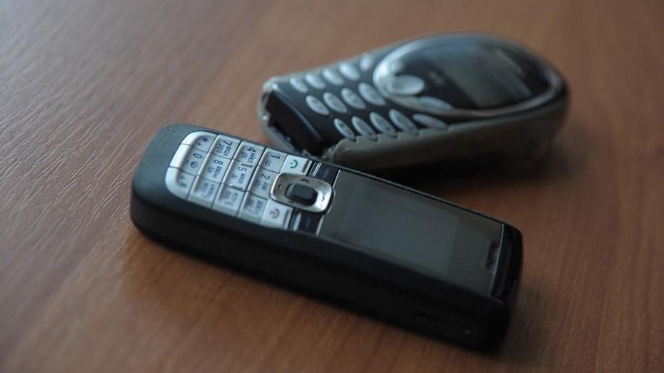ВВоронежской области неизвестные перебросили вколонию 10 телефонов