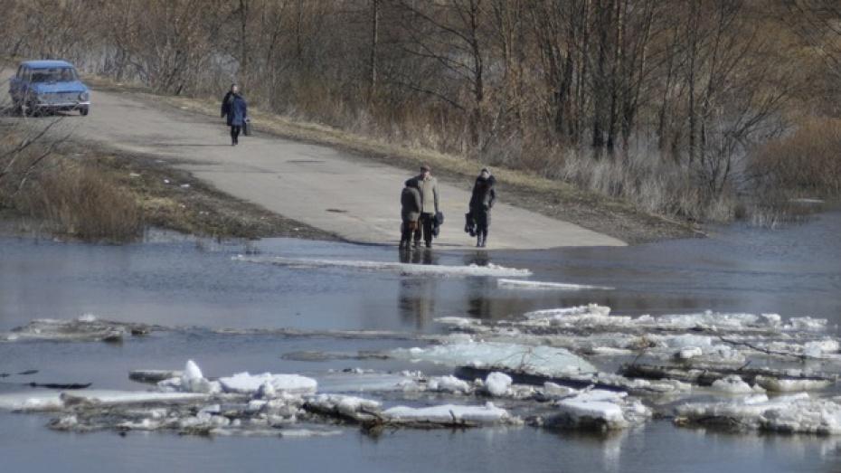 Три участка автодорог и 20 мостов в 11 районах области может затопить
