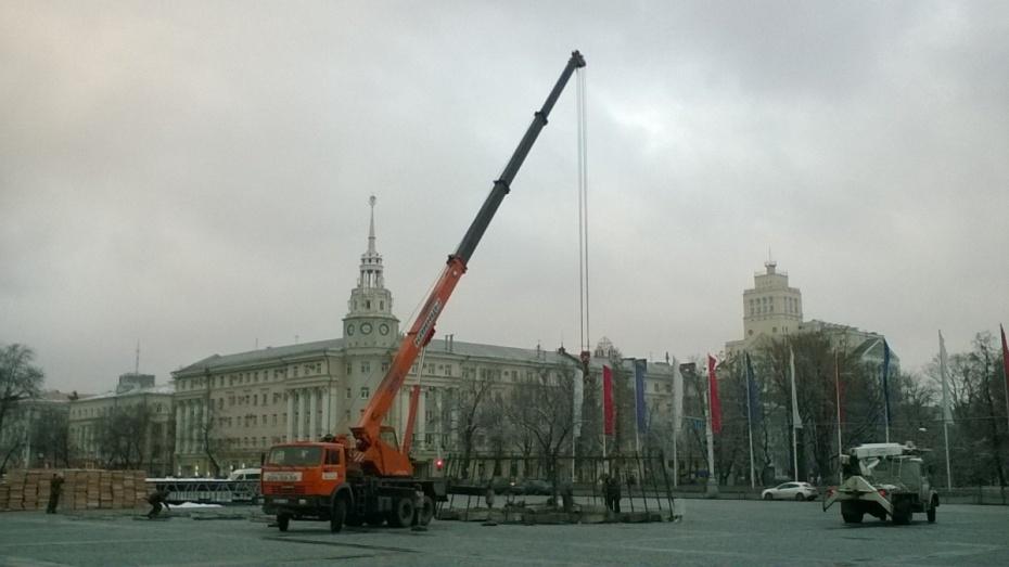 На площади Ленина в Воронеже началась установка новогодней елки