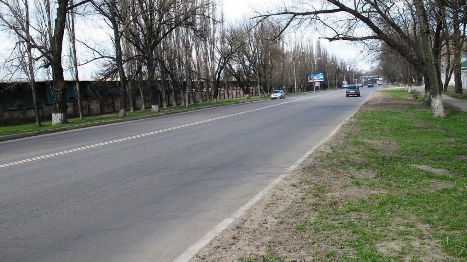 Воронежские общественники предложили назвать Волгоградскую улицу Сталинградской