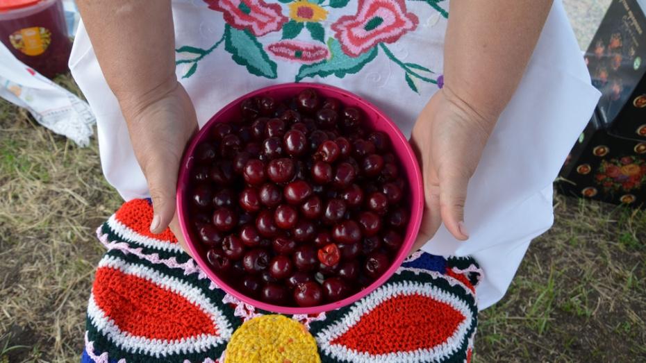 В Павловском районе пройдет праздник «Ливенская вишня»