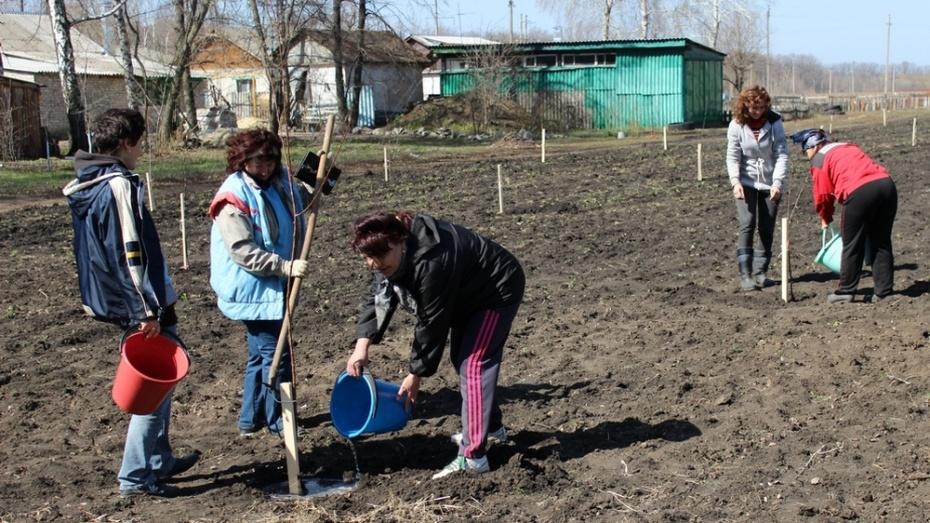 Таловские ученые в рамках акции «Лес Победы» посадили фруктовый сад