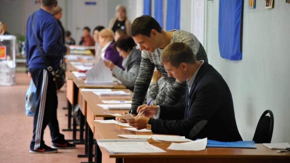 Международные наблюдатели высоко оценили организацию выборов в Воронеже