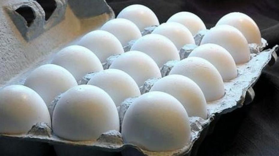 Два предприятия Хохольского района вошли в десятку лучших сельхозпредприятий области