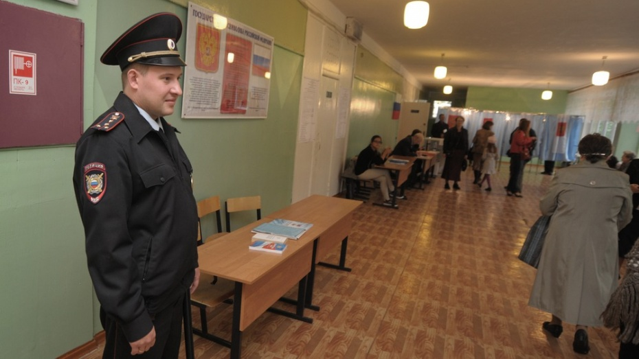 Избирательные участки в Воронеже перед выборами проверят кинологи