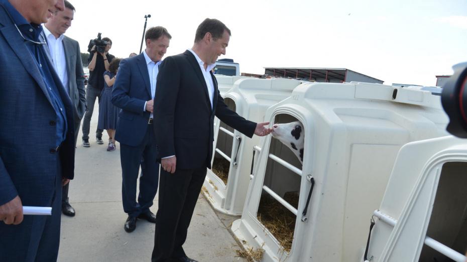 После визита в Воронеж Дмитрий Медведев утвердил госпрограмму развития сел