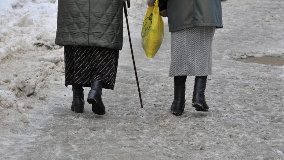 Мэр Воронежа: «Качество уборки тротуаров не удовлетворяет ни нас, ни горожан»