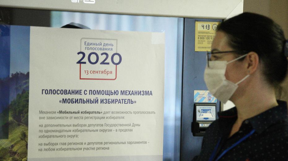 В Воронежской области опубликовали предварительные итоги выборов