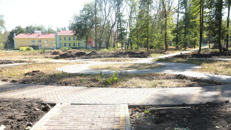 В бобровском селе Слобода благоустроят новый парк