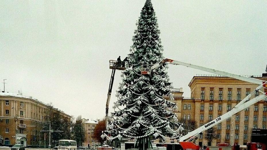 В Воронеже завершили установку центральной новогодней елки