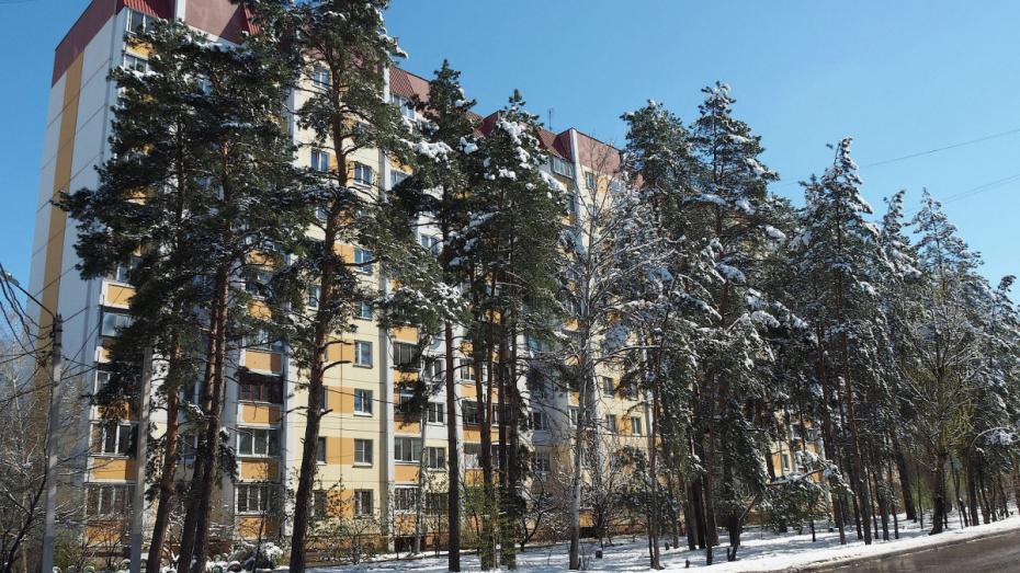 Роспотребнадзор рассказал о причинах неприятного запаха в Советском районе Воронежа