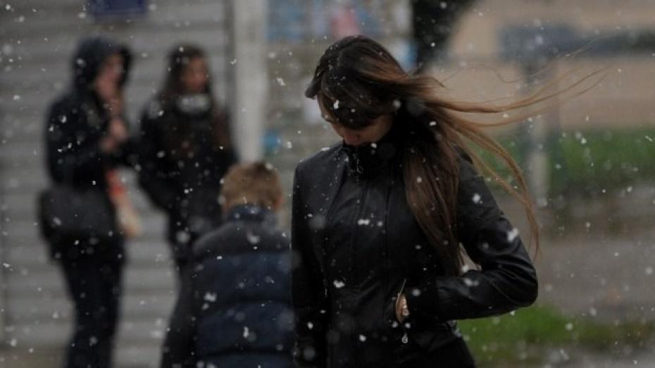 ВВоронеже предполагается сильный ветер 1декабря