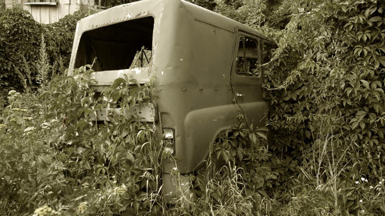 Криминальное чтиво. Как страсть к автомобилям обернулась 8 убийствами в Воронежской области