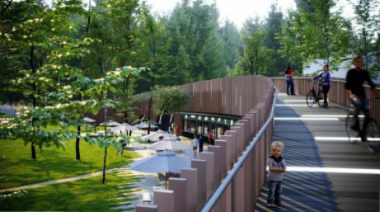 В Воронеже приостановили реконструкцию парка «Орленок»
