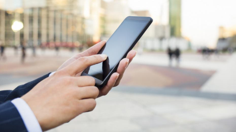 Воронежские компании стали активнее использовать мобильный интернет
