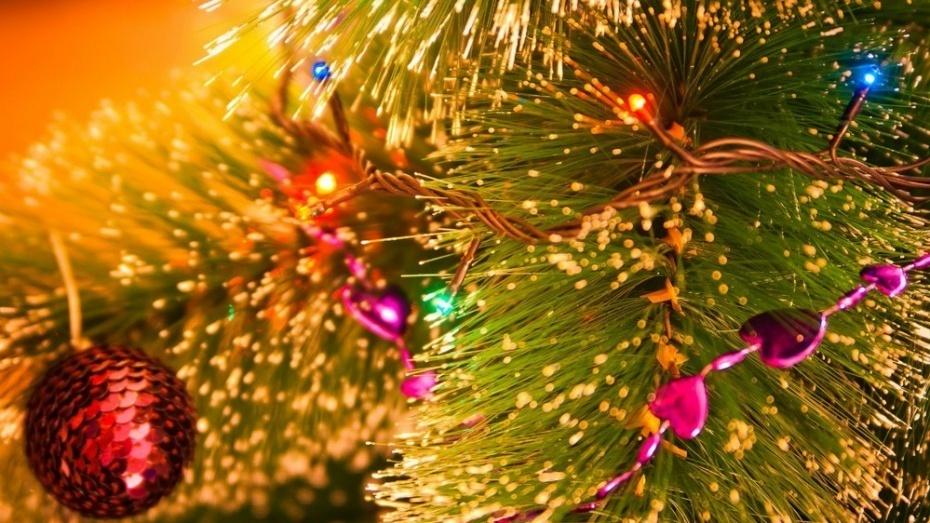 Воронежцев приглашают наоткрытие новогодних ёлок в основном парке и«Алых парусах»