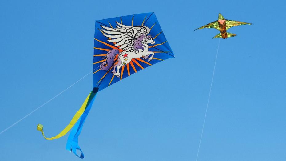 Воронежцев пригласили на фестиваль воздушных змеев