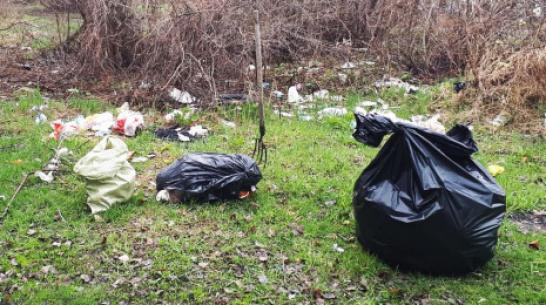 В Лисках волонтеры очистят от мусора дикий пляж в районе понтонного моста