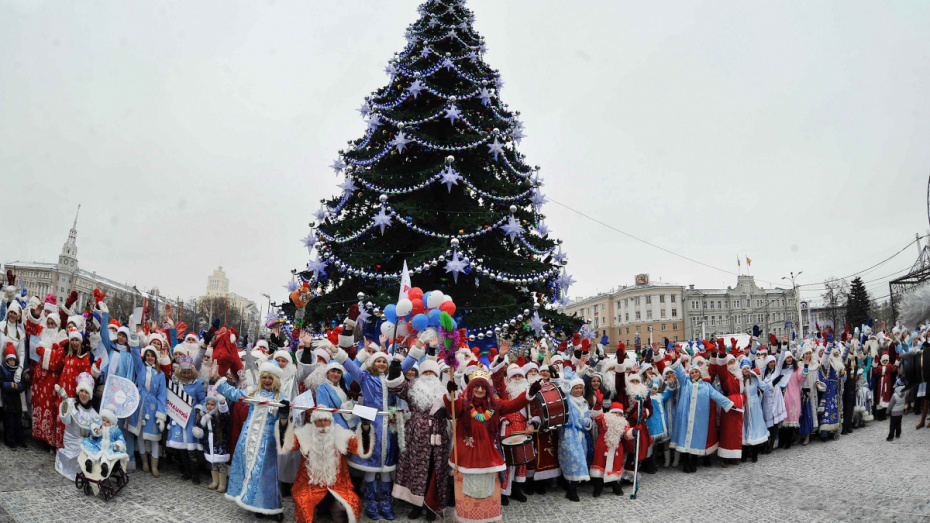 Воронеж вошел в топ-10 городов с самыми высокими новогодними елками