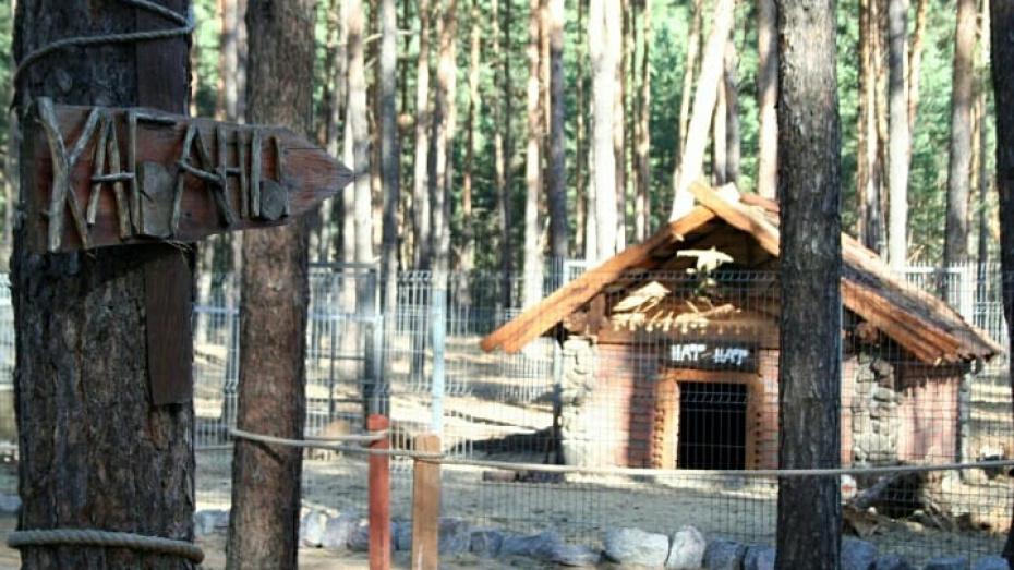 В Воронежском зоопитомнике появились домики из сказки «Три поросенка»