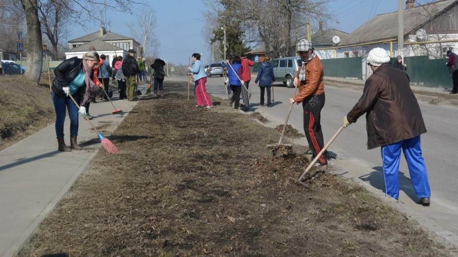 В Воронежской области составят рейтинг самых чистых районов