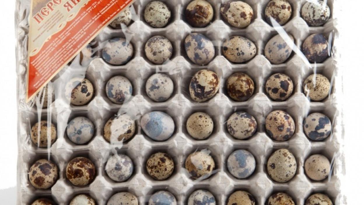 Воронежская область производит 40 процентов перепелиных яиц в стране