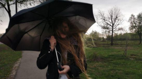Спасатели предупредили воронежцев о надвигающемся сильном ветре