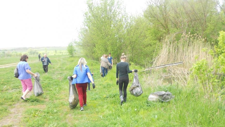 В Павловском районе впервые пройдет акция «Чистый лес»