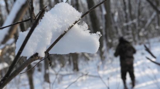 В Воронеже средняя месячная температура в феврале будет выше нормы
