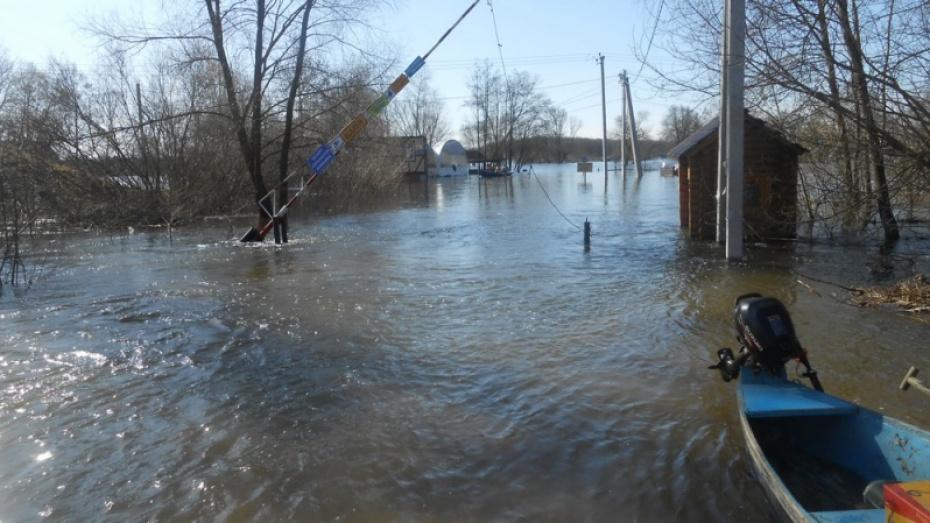 Власти сэкономят 12 млн рублей на определении зон подтопления в Воронежской области