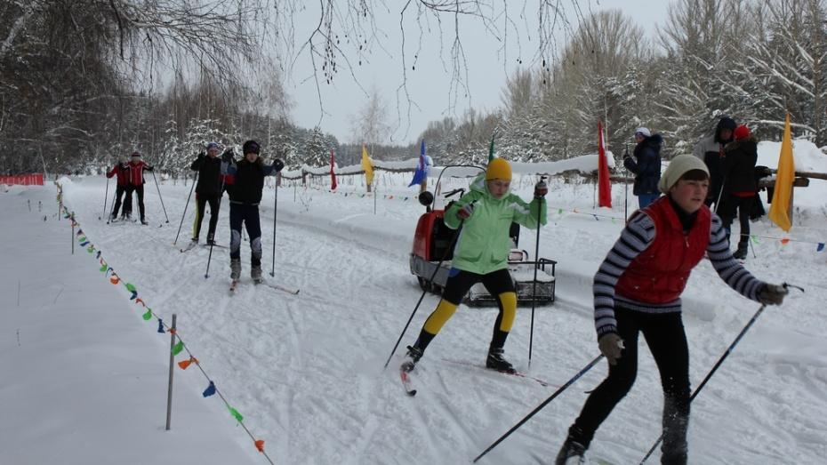 В Павловске 7 февраля отметят День зимних видов спорта