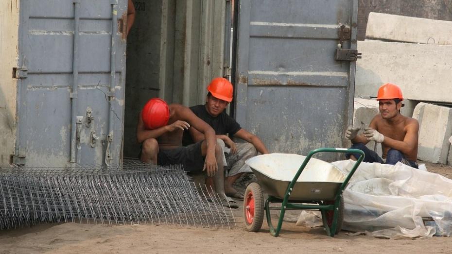Воронежская облдума предложила новую концепцию трудовой миграции в Россию