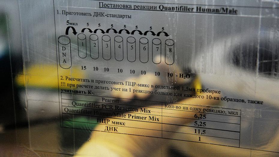 В Воронежской области мужчина подал на мать ребенка в суд ради ДНК-теста