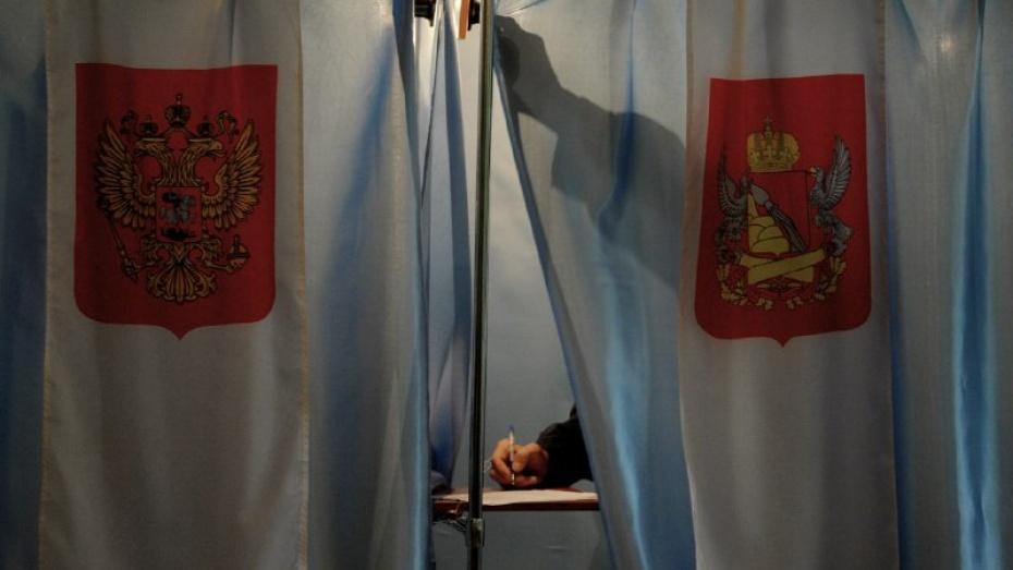 Воронежский избирком зарегистрировал первую партию на выборы в гордуму