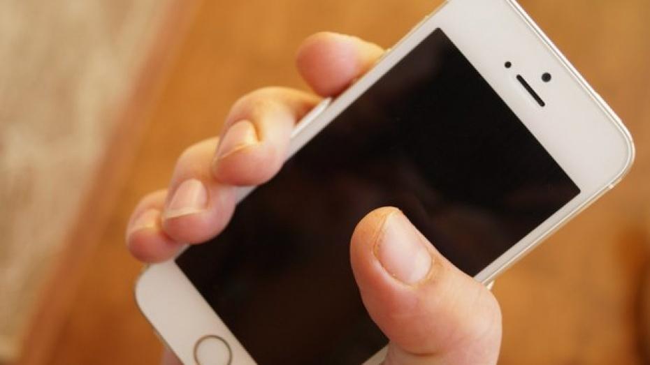 В Воронеже 16-летний юноша попросил у друзей «поиграть» в телефоне и украл 90 тыс рублей
