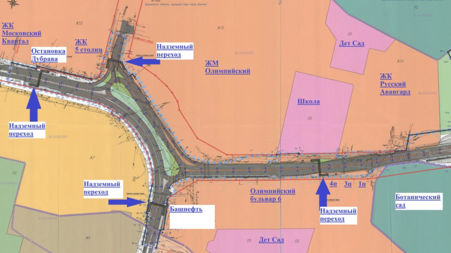Воронежцы создали петицию против проекта дороги от Шишкова до Тимирязева