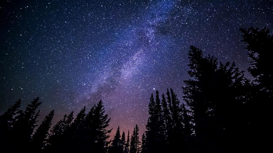Жители России в ночь на 18 ноября увидят звездопад