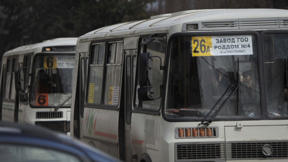 Власти закупят 57 ПАЗов для маршрутов в Воронежской области