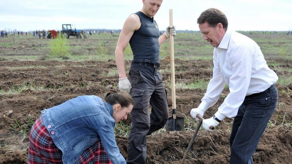 Губернатор призвал жителей Воронежской области принять участие в весенних субботниках