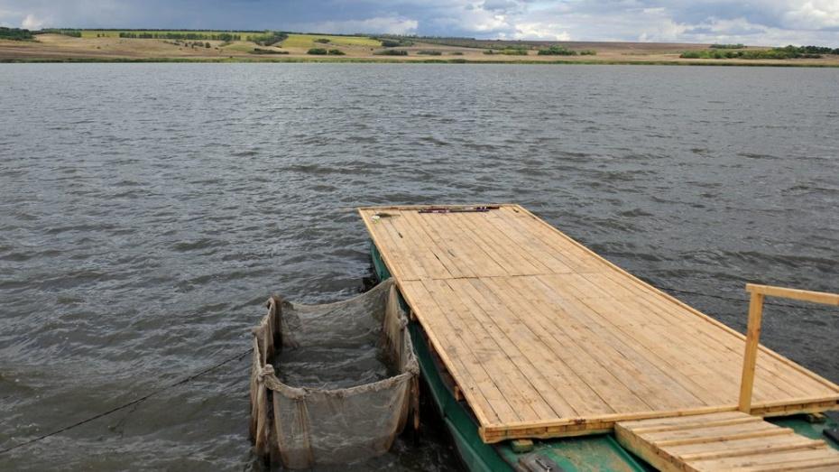 Власти Воронежской области расстались с акциями «Рыбопитомника» за 15,6 млн рублей