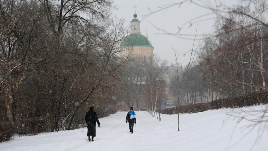Выходные в Воронеже будут морозными и снежными