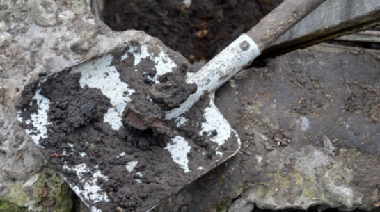 В Воронежской области подростки нашли в старом погребе человеческие останки