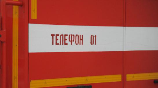 Спасатели объявили штормовое предупреждение из-за угрозы пожаров в Воронежской области