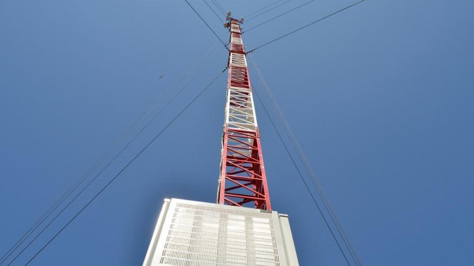 В Семилукском районе осенью установят 8 вышек сотовой связи