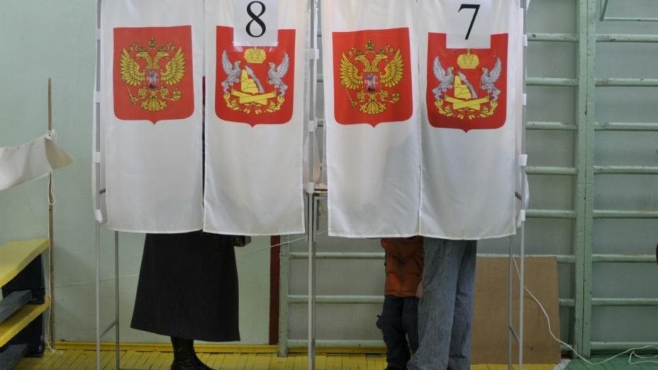 Две парламентские партии подали документы на выборы в Воронежскую облдуму